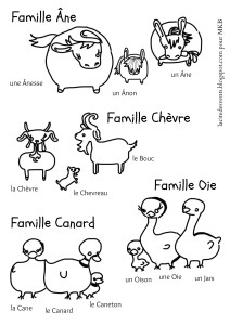 Animal Parents and Babies in French