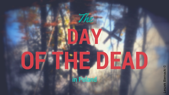 day of the dead series