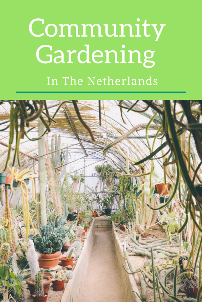 Community Gardening in the Netherlands