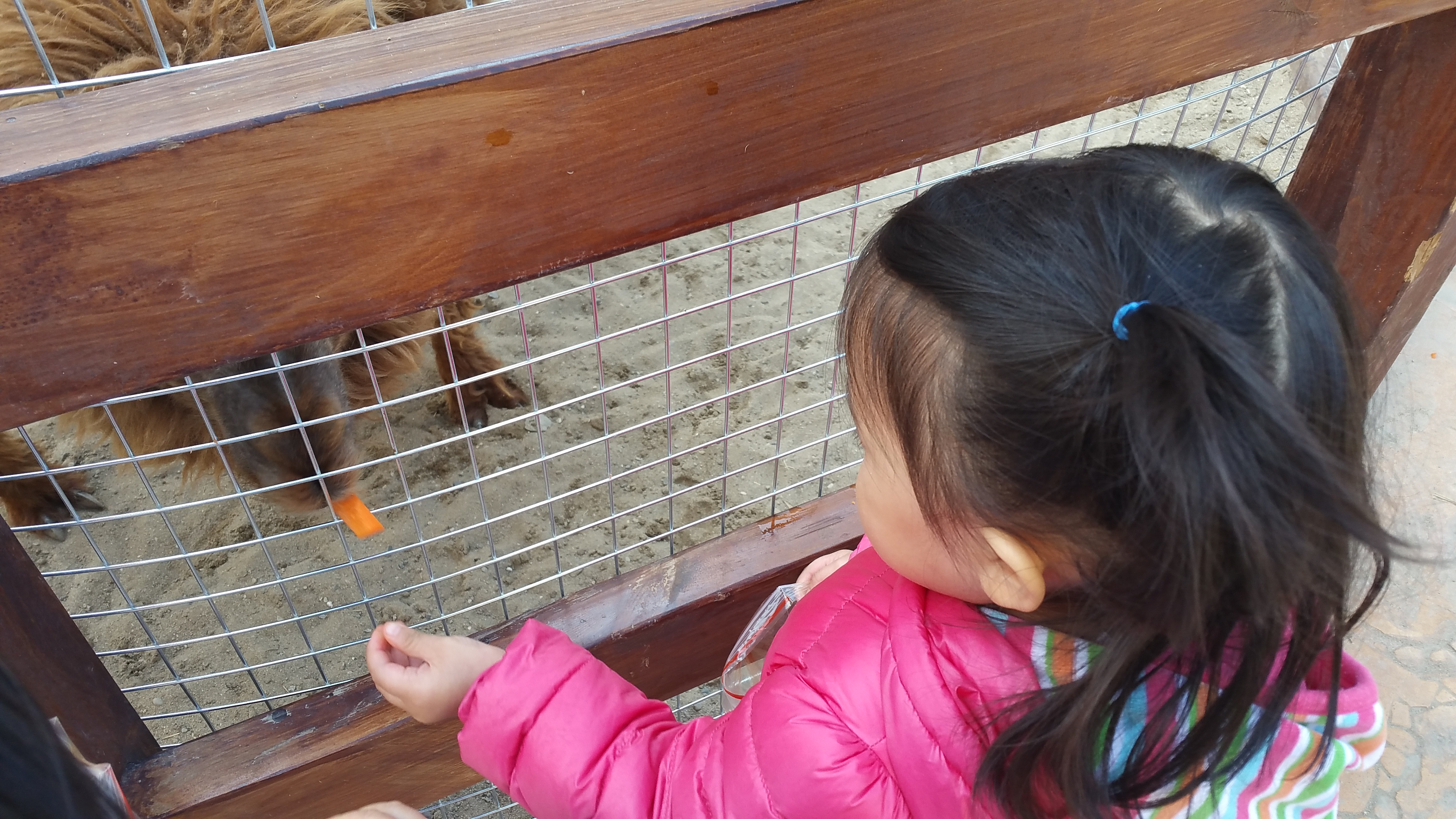 Beijing with Kids | Multicultural Kid Blogs