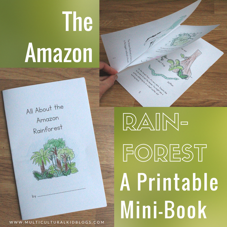 The Amazon Rainforest for Kids Mini-Book