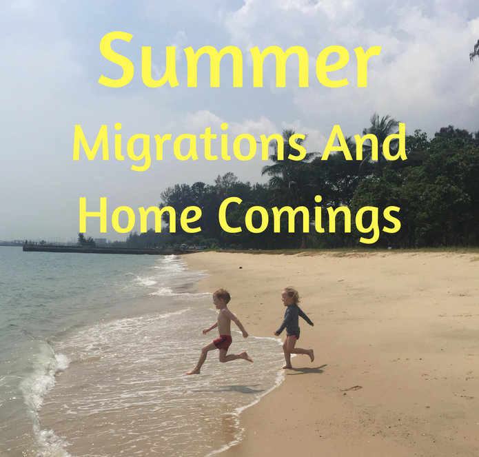 Summer Migrations and Home Comings