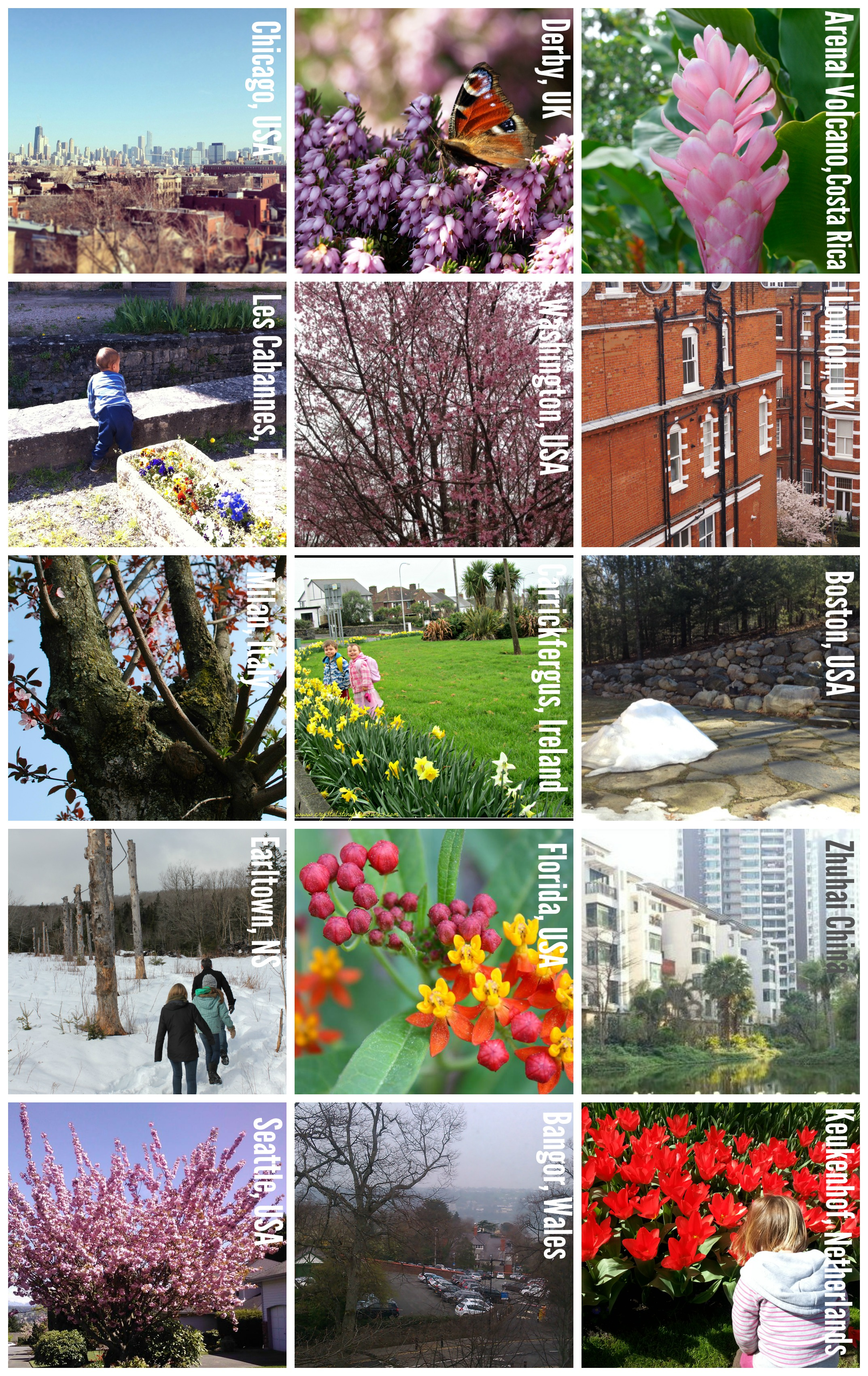 Spring with cities Collage