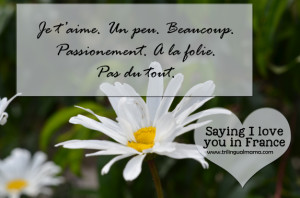 sayingiloveyouinfrance