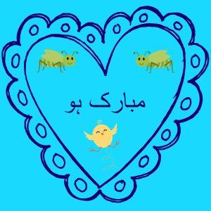 Boy Urdu