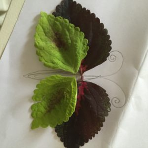 Fall Nature Craft | Multicultural Kid Blogs