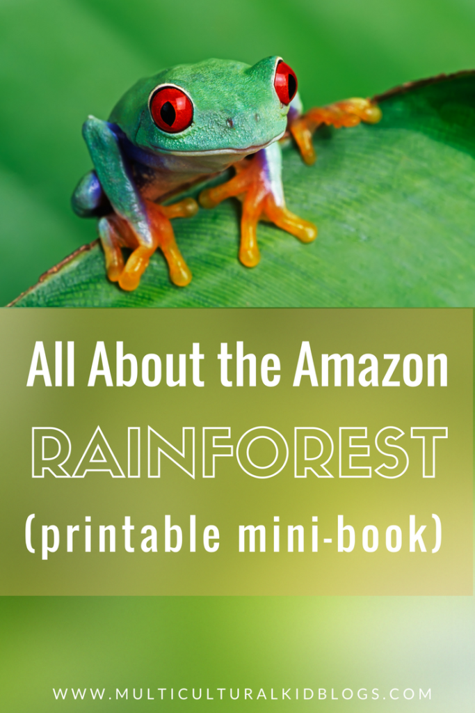 The Amazon Rainforest for Kids with Free Printable Mini-Book
