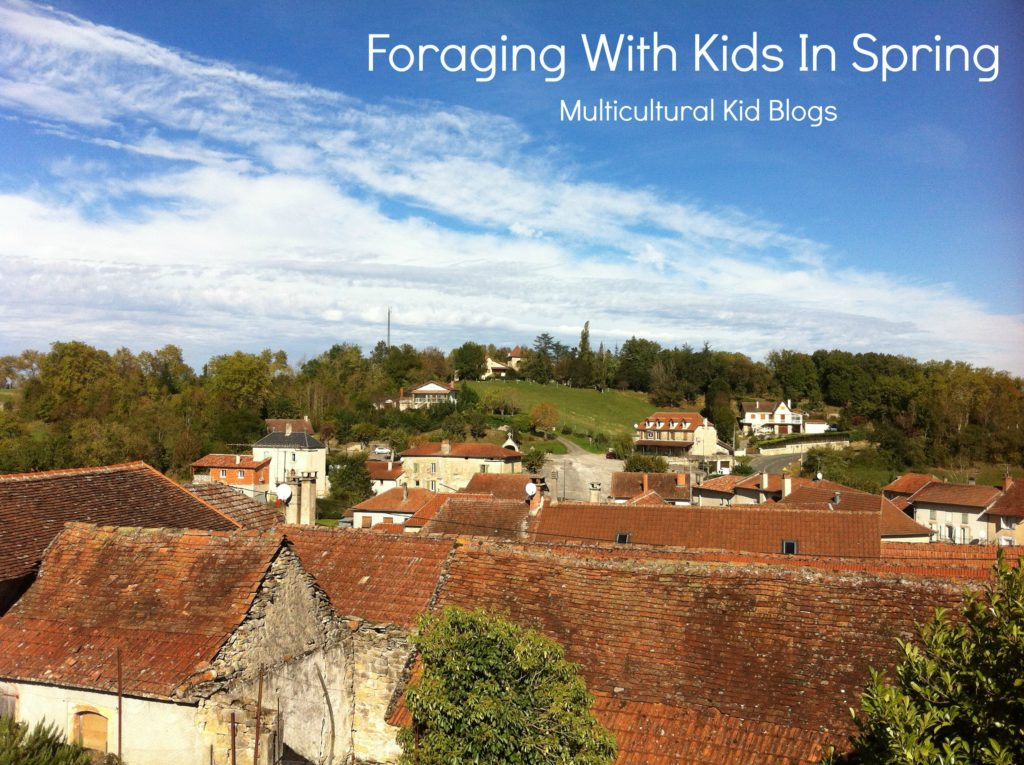 Spring Foraging With Kids