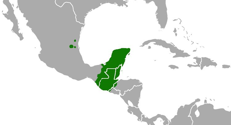 Map of the Maya civilizations