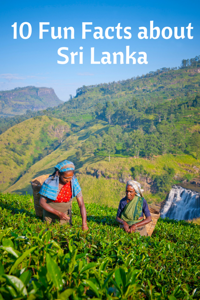 10 Fun Facts About Sri Lanka