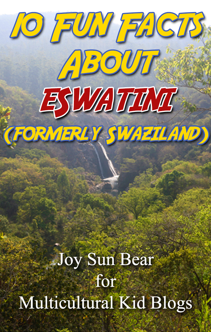 10 facts eswatini