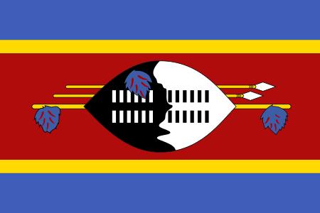 10 Fun Facts about Eswatini | Eswatini flag