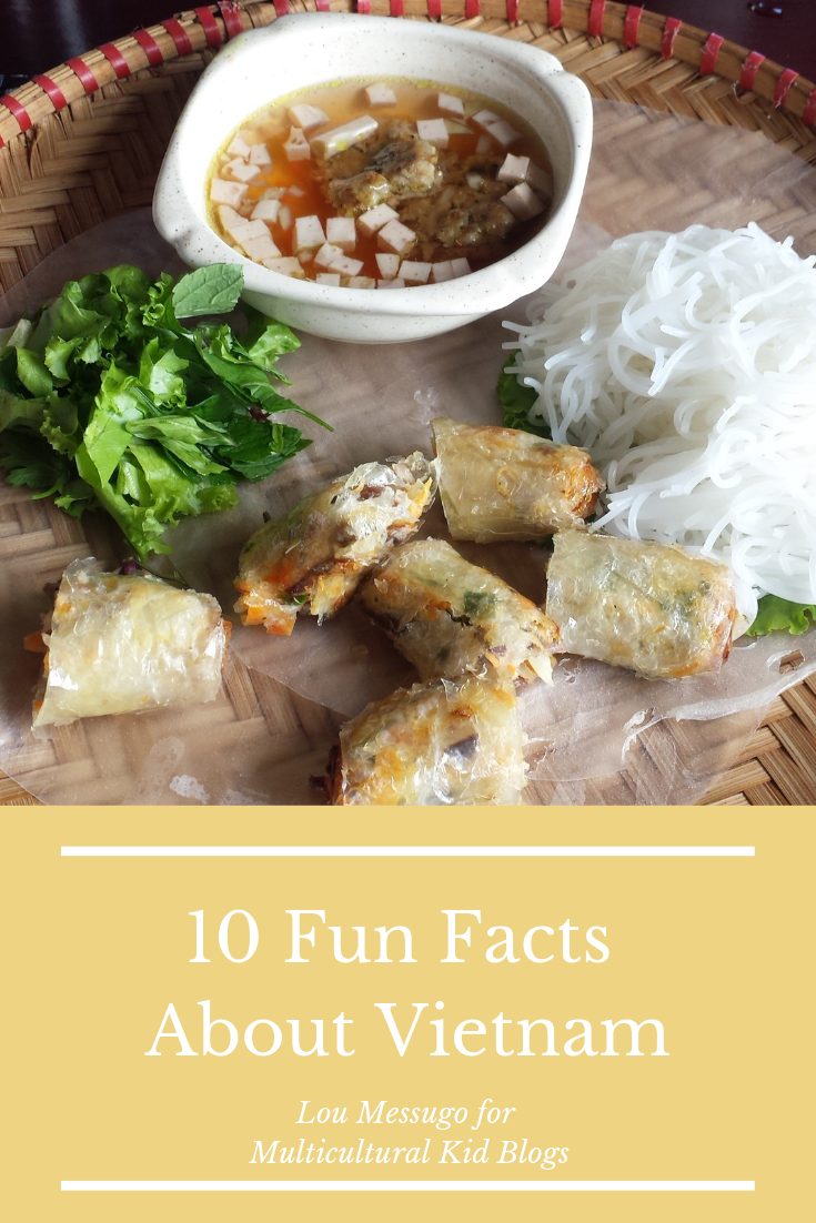 10 Fun Fact About Vietnam | Multicultural Kid Blogs