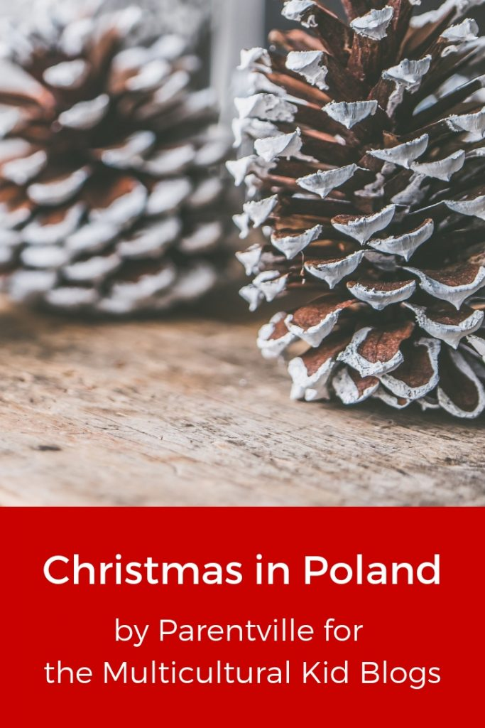 10 Things You Didn't Know About Christmas in Poland, Parentville for Multiculutural Kid Blogs