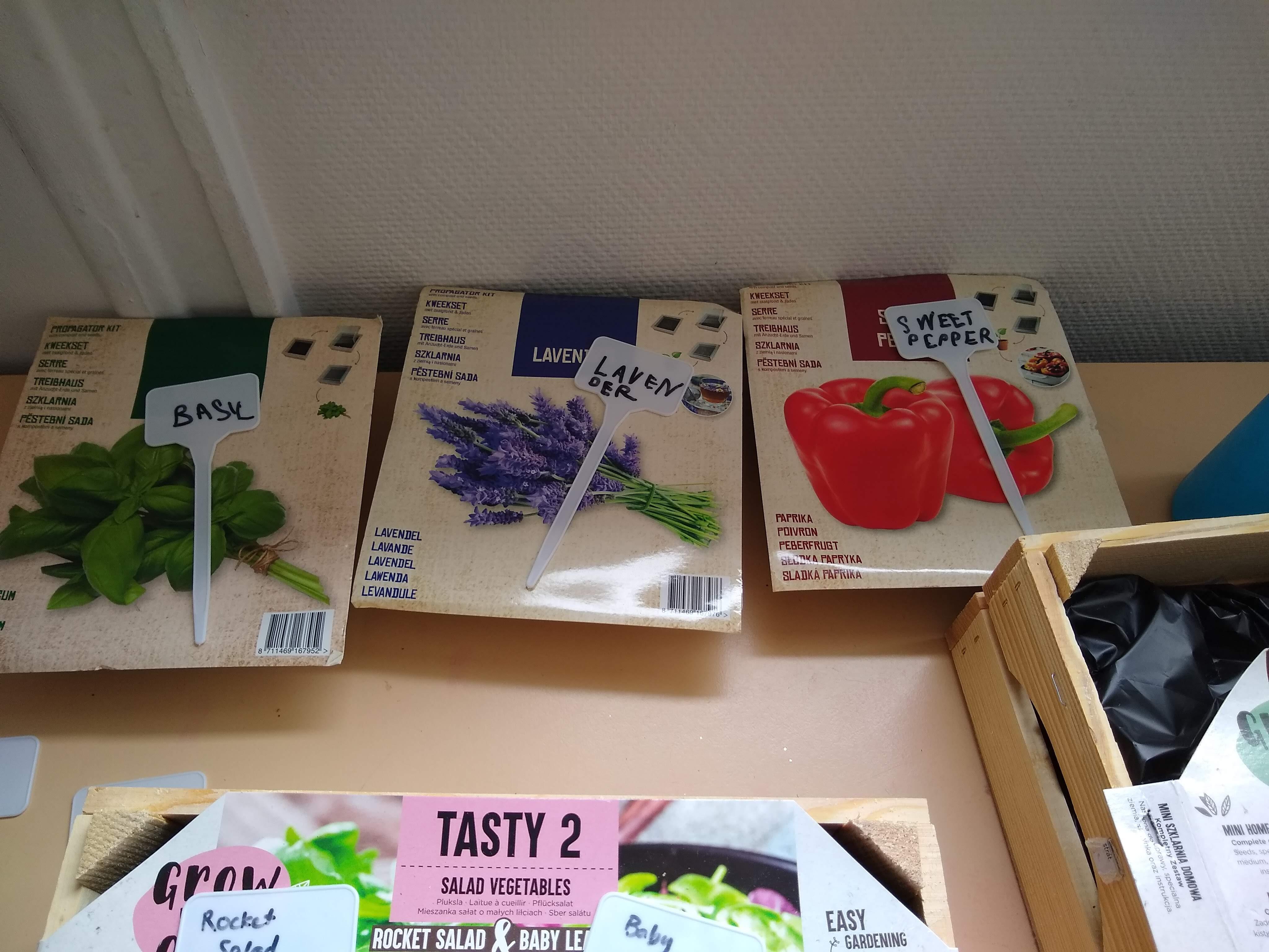 teach children gardening | multicultural kid blogs