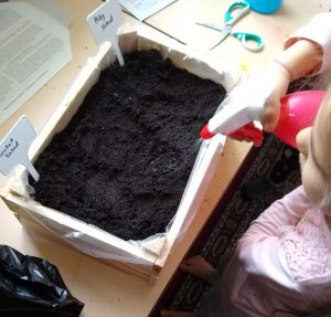 teach children gardening | Multicultural kid blogs