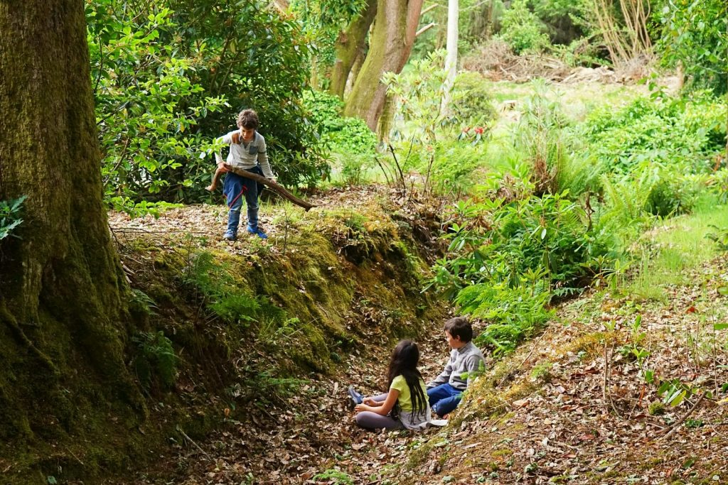 Playing in the woods | Let Children Fall in love with Earth | MKB