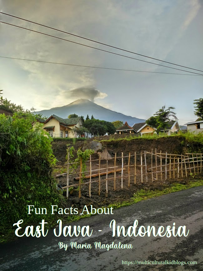 Fun Facts About East Java - Indonesia