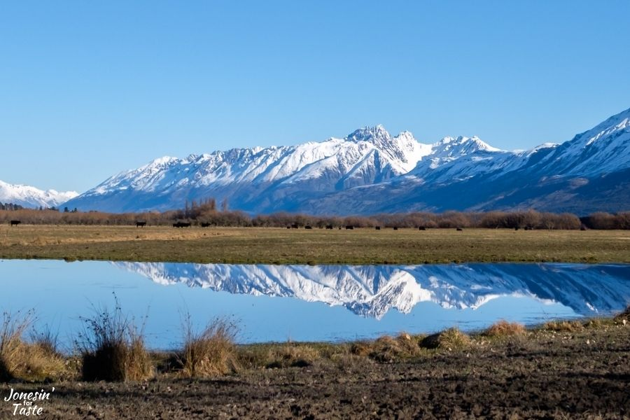 snow capped peaks in New Zealand mirrored in a lake in the foreground
