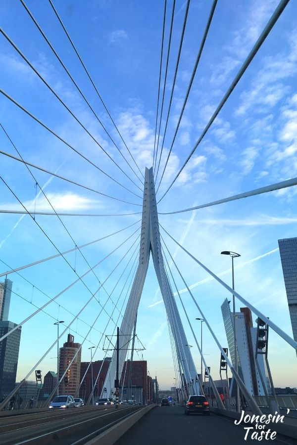 looking up at the cabling of the Erasmus Bridge