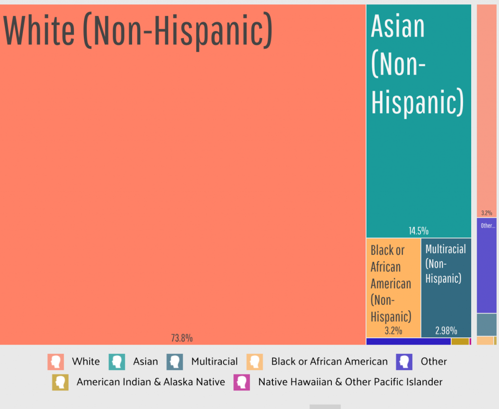 Newton Demographics